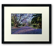 The purple carpet Framed Print