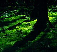 irish green by Amagoia  Akarregi