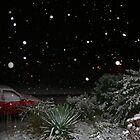 Brrrrrr it's snowing tonight - didn't hear that on the weather forecast! by Justine Humphries