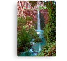 Moony Falls and Tree Canvas Print