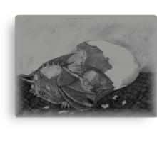 Birth of a dragon Canvas Print