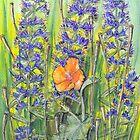 Yellow Horn Poppy - Glaucium flavum and Viper's Bugloss - Echium vulgaris by Sue Abonyi