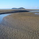 Low tide at Diamond Head Creek - Queensland by benwaa