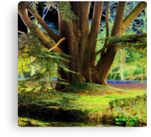 In Another World ... Canvas Print