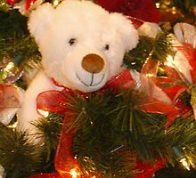 A Beary Merry Christmas by BarbL