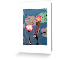 Pond Lillies Greeting Card