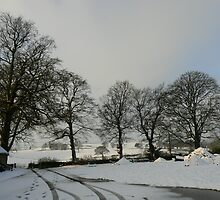 Snowy Broome Park Farm by tarabas57