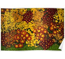 Bunches of Yellow, Copper, Orange, Red, Maroon - Fabulous Autumn Abundance Poster