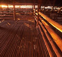 morning light - Old Mungo shearing shed, NSW. by Tony Middleton