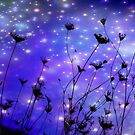 Fireflies *(Sold 2 Canvas Copies on RB)* by aussiedi