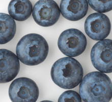 Blueberries as a Healthy and Nutritious Fruit Sticker