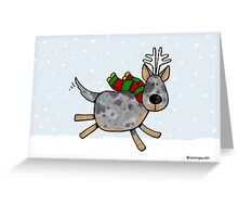 cattle dog christmas Greeting Card