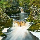 Waterfalls Trail, Ingleton by Stephen Knowles
