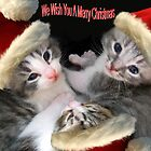 Christmas Kittens by DigitalDelights