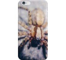 Lil cutie iPhone Case/Skin