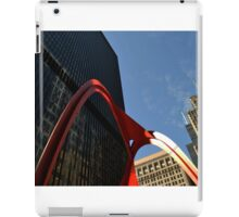 Chicago Flamingo iPad Case/Skin