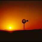 Outback Windmill by Katie Sumner-Cann