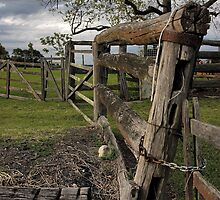 Farm fence by Rosalie Dale