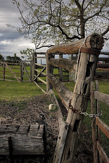 Farm fence by Rosalie Dale