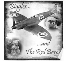 Biggles And The Red Baron Poster