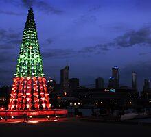 Christmas Lightings by whoalse