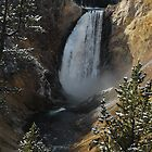Yellowstone Falls first snowfall by Janet Houlihan