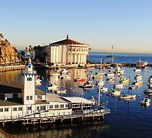 Catalina, CA Opera House by ANNA MCALISTER
