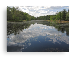 Spring Lake Canvas Print