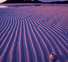 against the grain...Nth Qld. by Tony Middleton