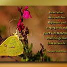 Nature Lover&#x27;s Prayer by Bonnie T.  Barry