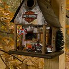Fall At The Biker Bird Hotel by Arthur &quot;Butch&quot; Petty