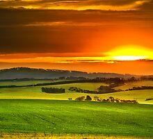 Barrabool Hills by James Collier