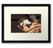 The Siamese Dudes Framed Print