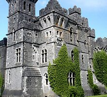 Ashford Castle - County Mayo, Ireland by Kim Roper