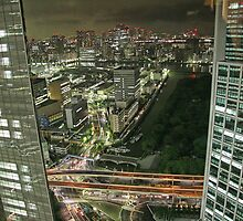 Tokyo - View from 32 by sparrowhawk