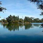 Laratinga Wetlands - Adelaide Hills by Leeo