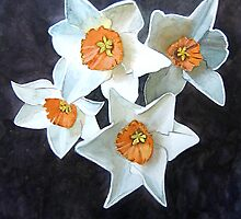 4 Narcissi by Tonkin