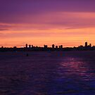 Sunset over Sydney by Sara Lamond