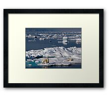 Ice Retreat Framed Print