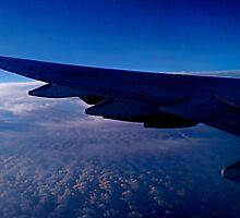 Blue Flight by diongillard