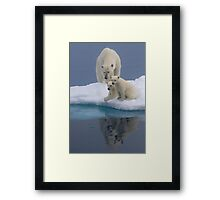 Polar Reflections Framed Print
