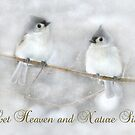Let Heaven and Nature Sing by Lori Deiter