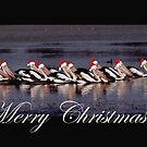 Santa's Helpers on Lake Boort by Loredana Crupi