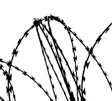Razor Wire by EricHands