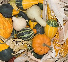 Gourds and Corn at a Farmer's Market by etienjones