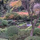 japanese garden by Bruce  Dickson
