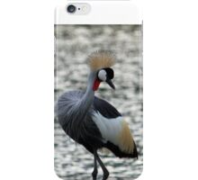 Taking a bow iPhone Case/Skin