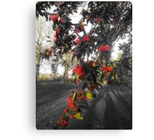 Fruitful Autumn Canvas Print