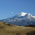 Mount Shasta by Kimberly Palmer