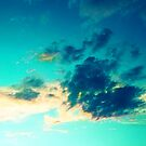 Sun Break by Barbara Gordon